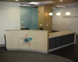Health Care Reception Desk Web